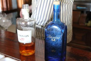 2013 05 solar gin ton 006